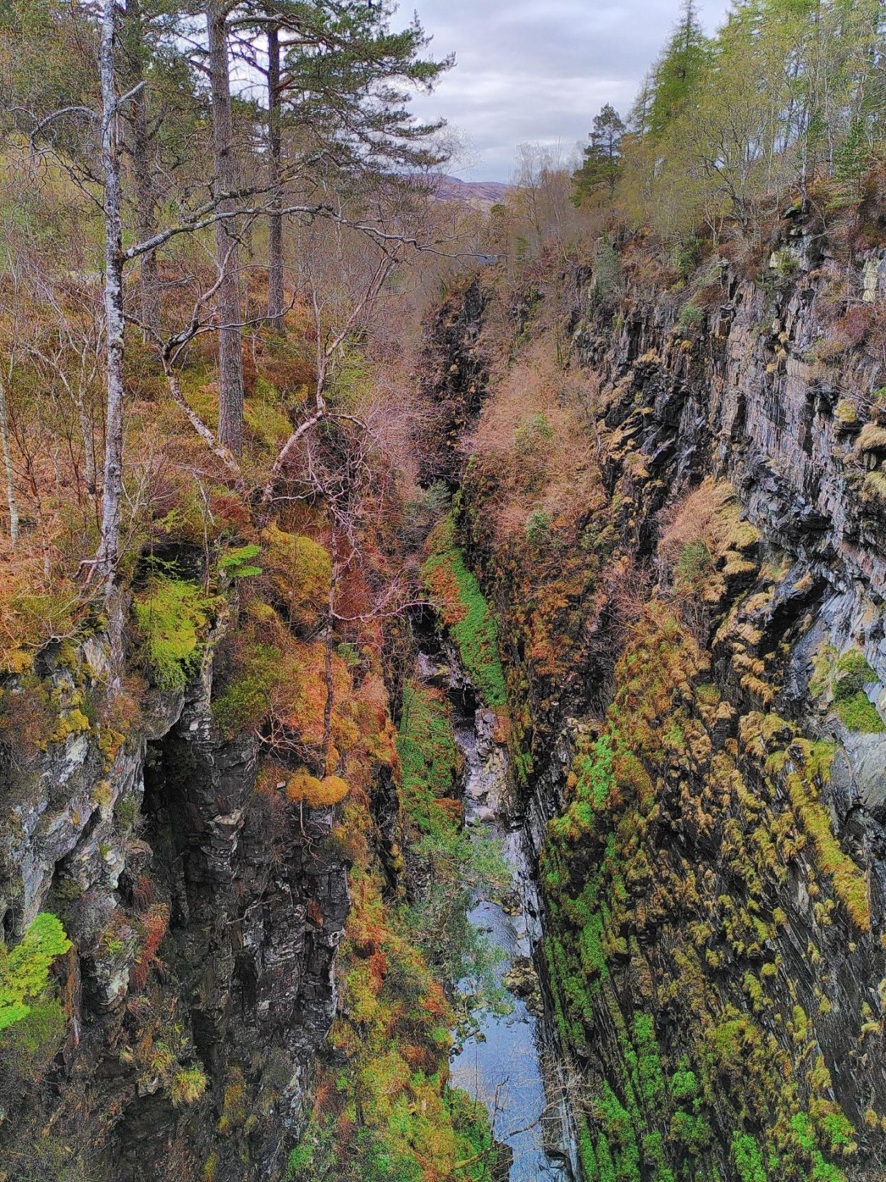 View into the gorge, very tall and sheer rock slopes speckled with mosses and greenery lead to a thin ribbon of water.