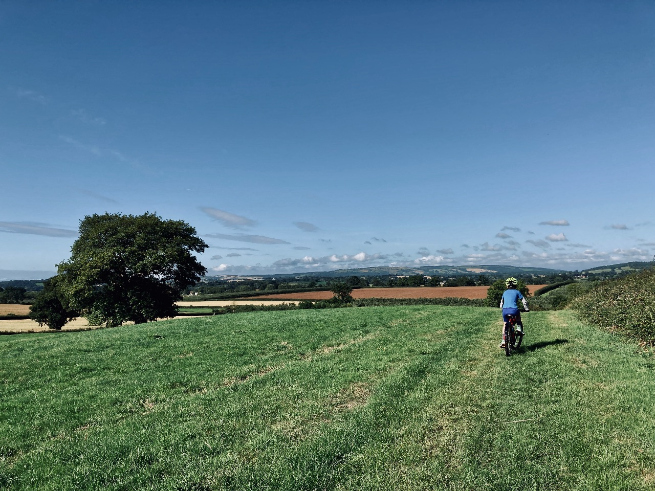 A child rides their bike away from the camera through a grassy field