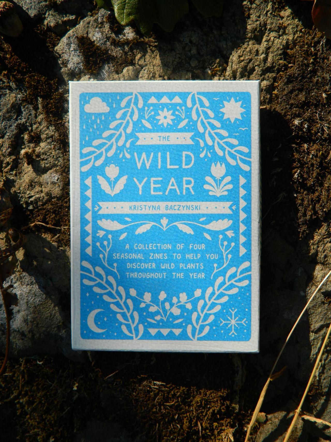 The Wild Year zine set by Kristyna Baczynski