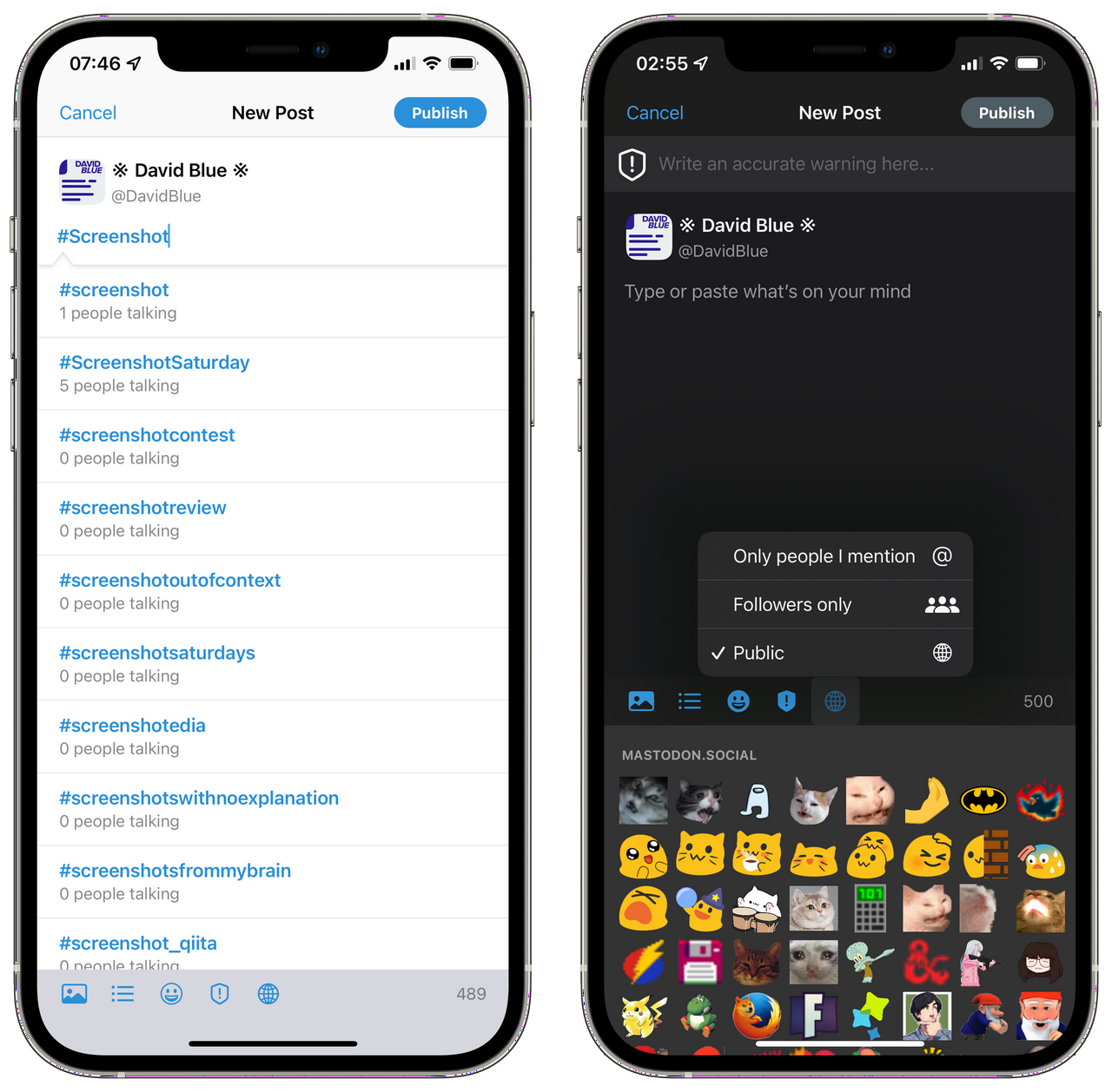 Composition Details in Mastodon for iOS