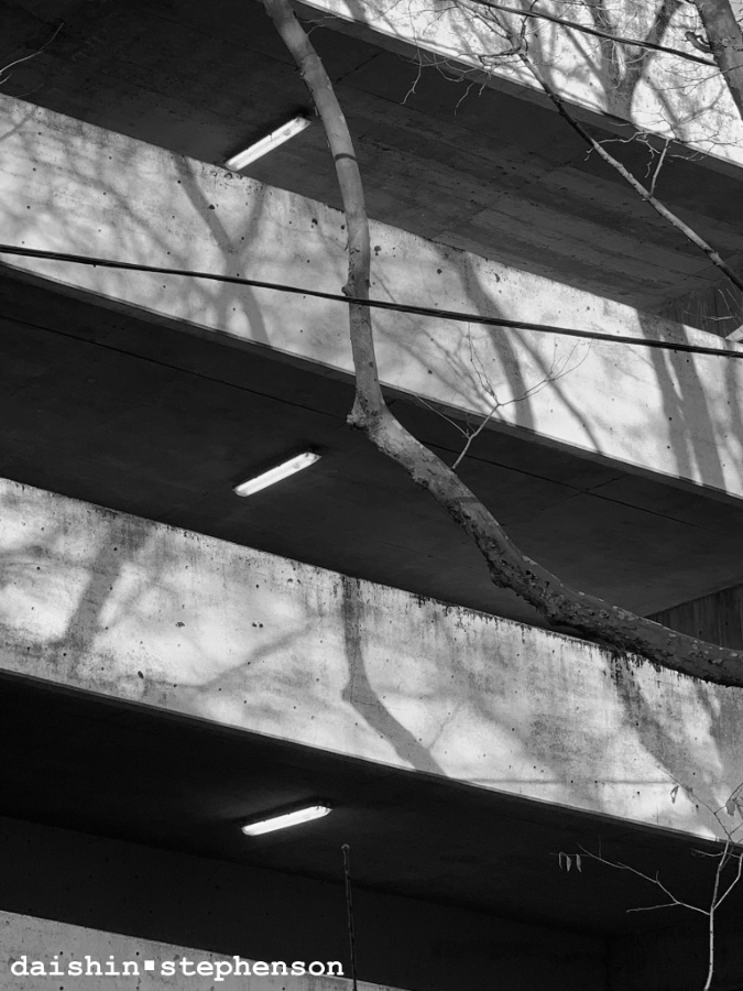 exterior of parking garage and tree shadows