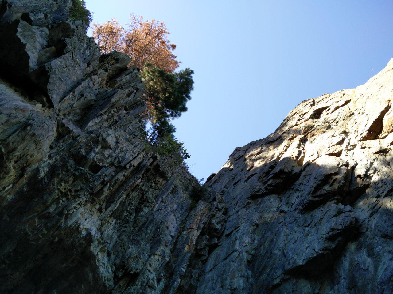 Cliffs at Monkey Bay in New Zealand