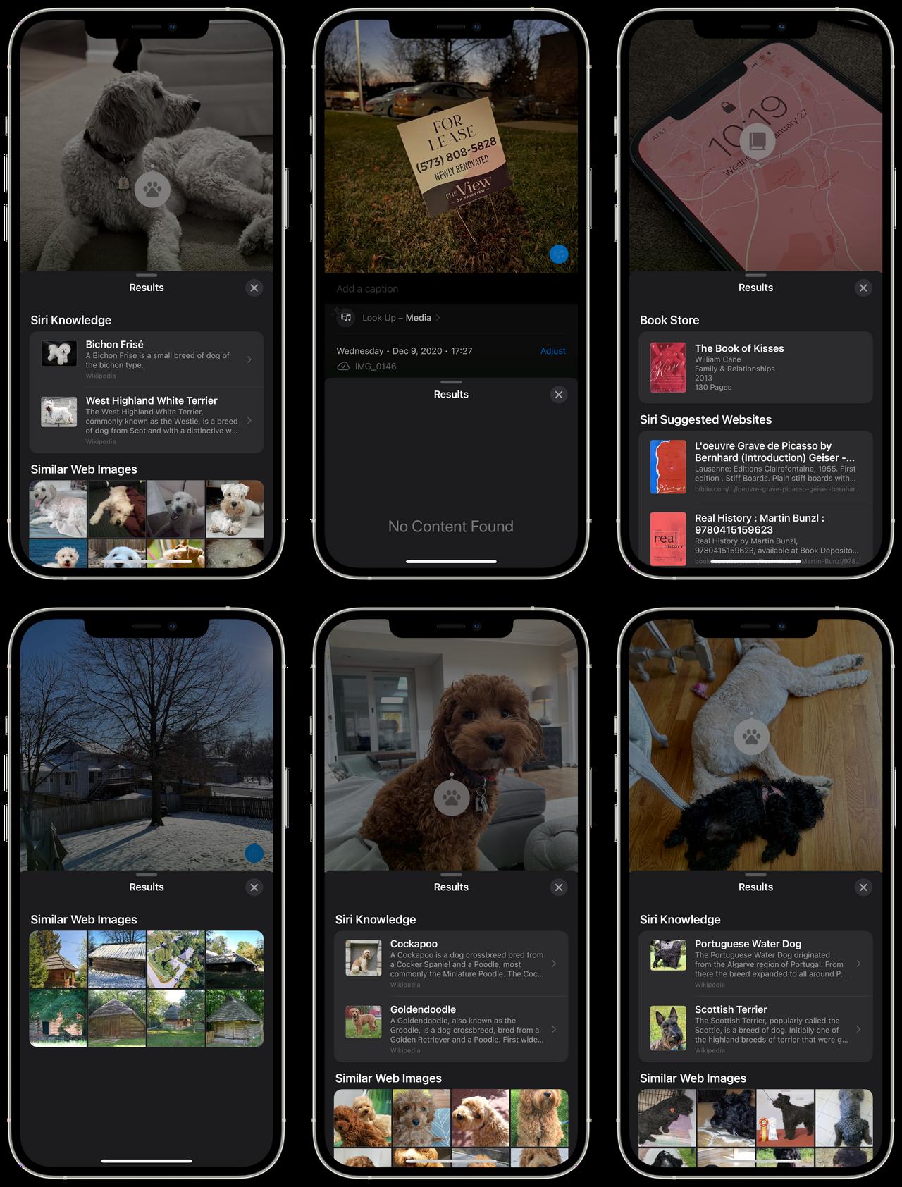 Visual Lookup in iOS 15