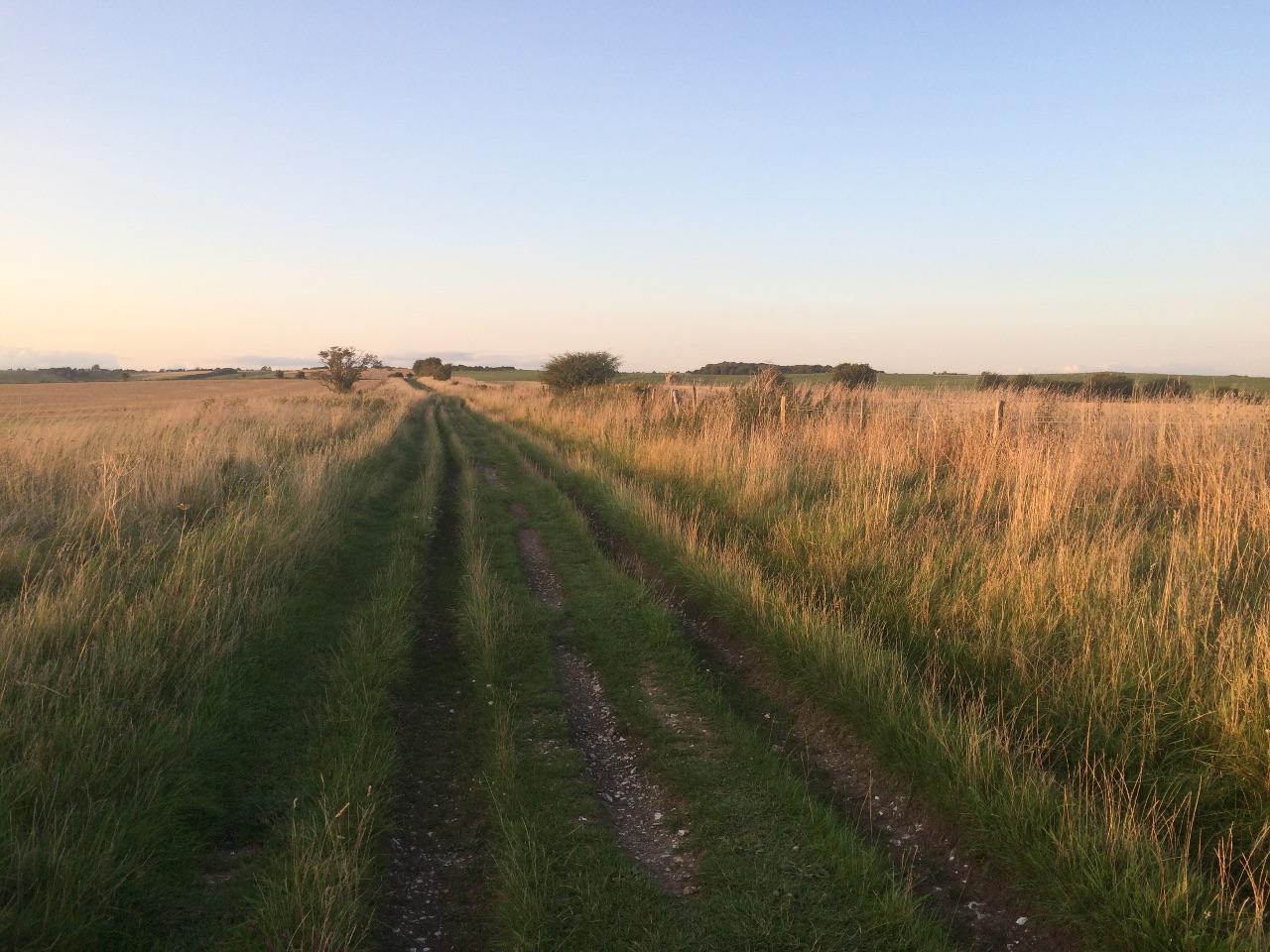The Ridgeway at dusk