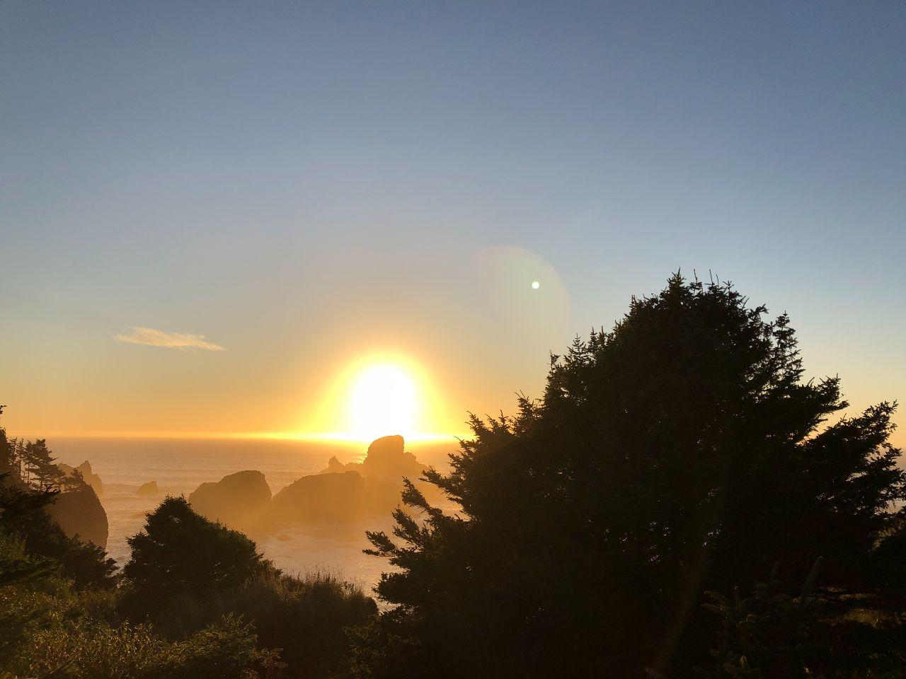 Oregon Coast - iPhone 8 Plus