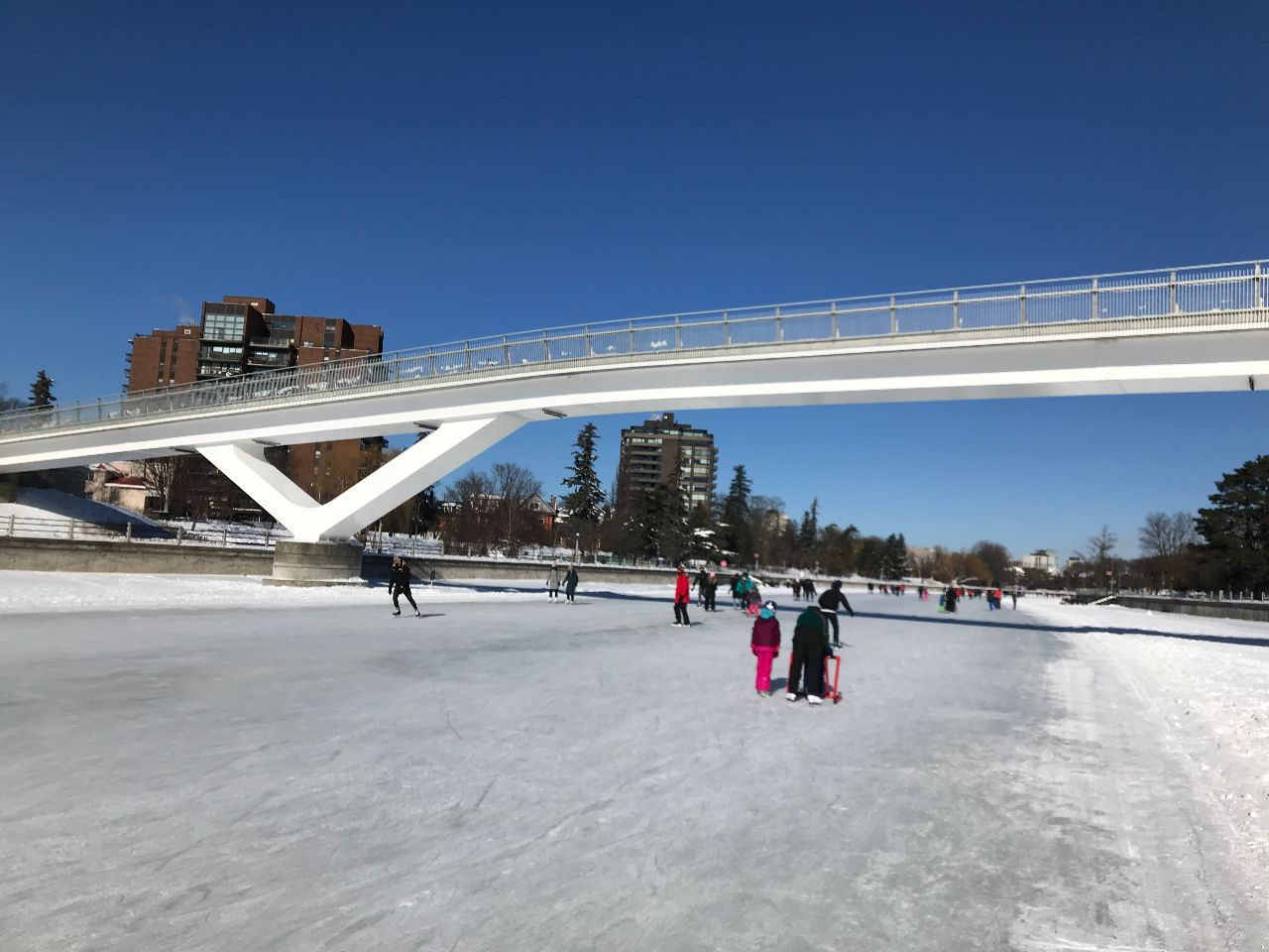 Skating under Flora Footbridge, that was built and opened in 2019