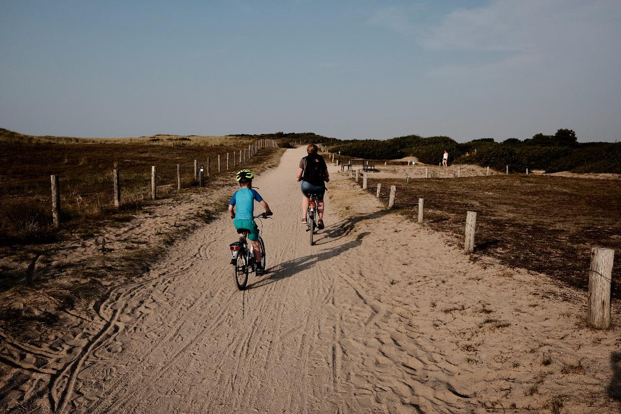An adult and child cycle away from the camera along a cycle path in the Dutch dunes
