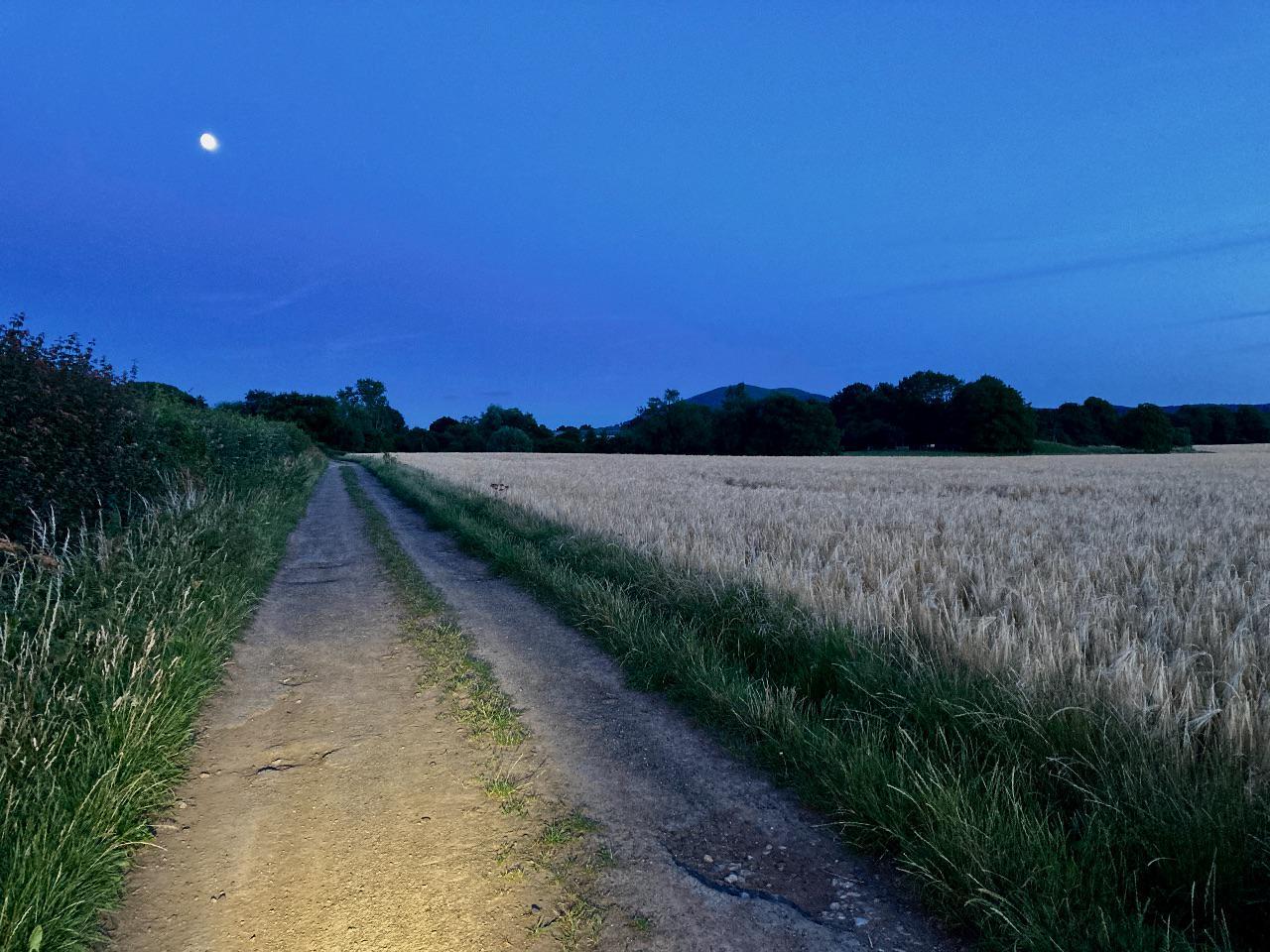 Bike light illuminates a track at night