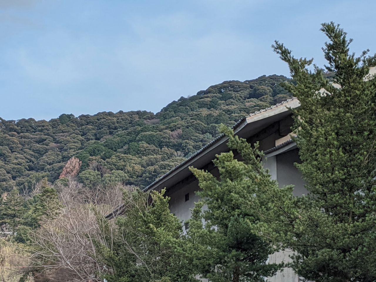 Yasaka Shrine 2