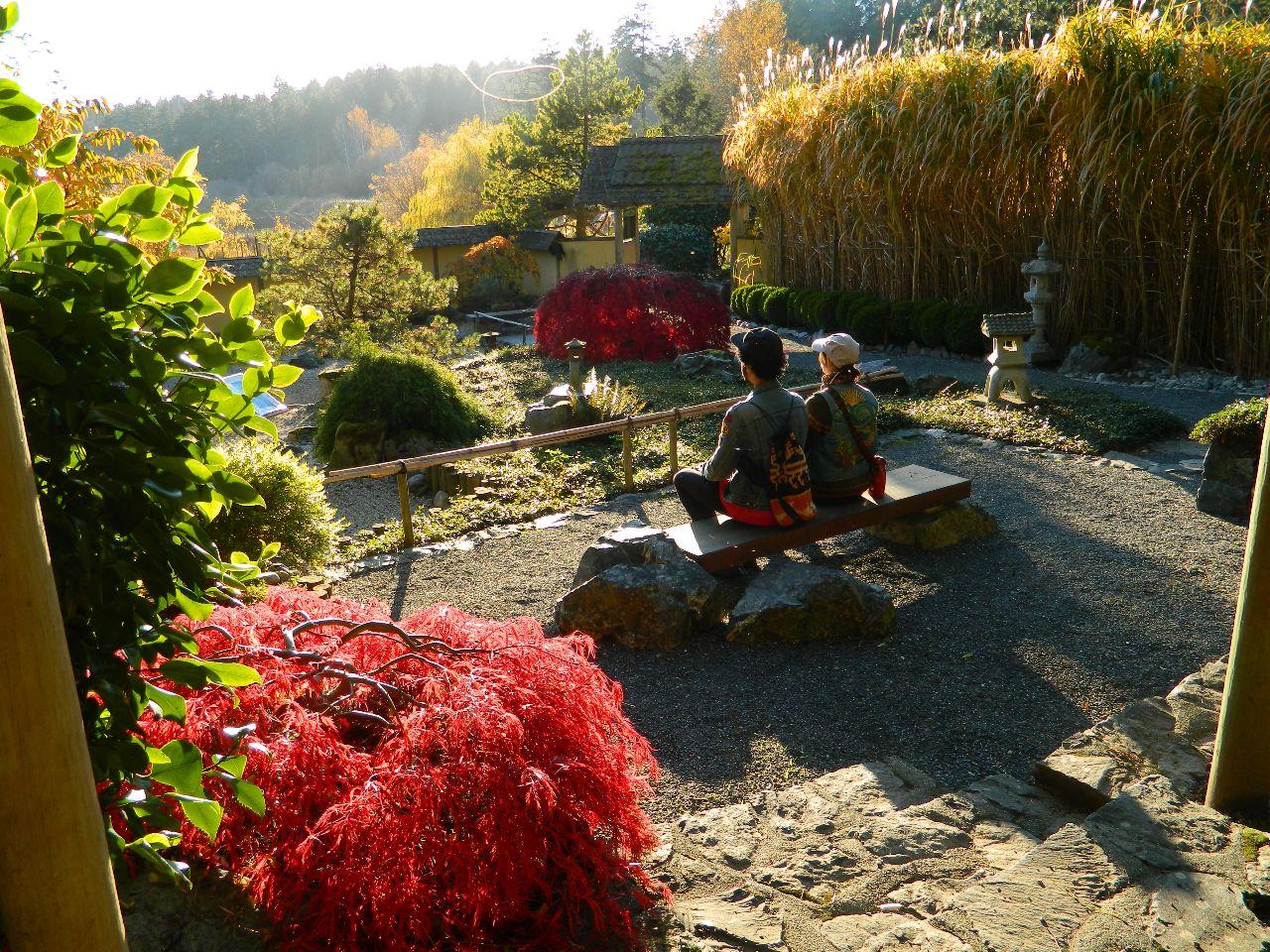 Zen garden at HCP