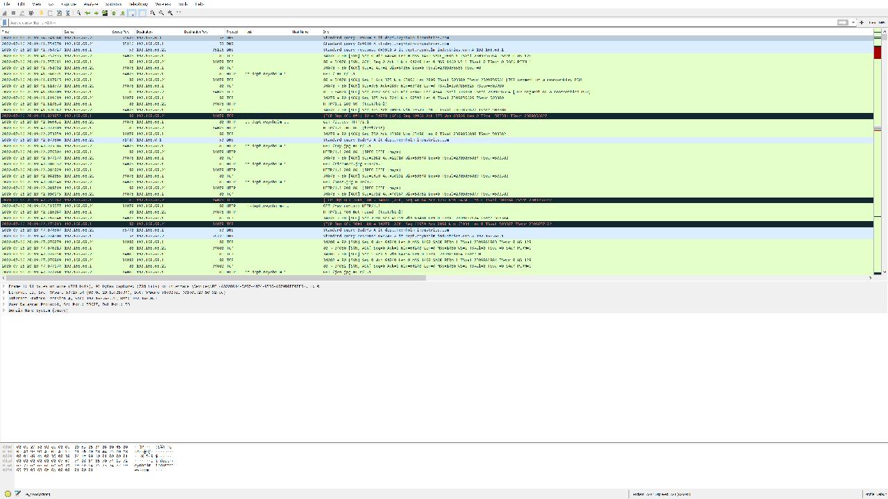 Initial Wireshark capture.