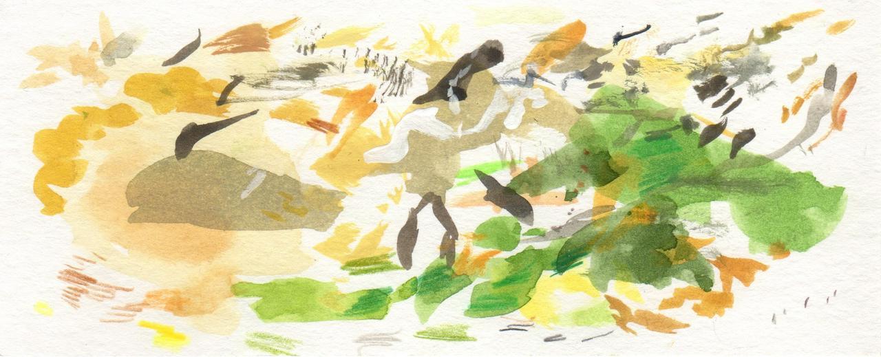 Kate watercolour strip
