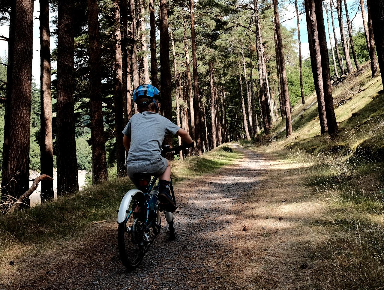 A child rides their bike up a trail through the trees on the Elan Valley Trail