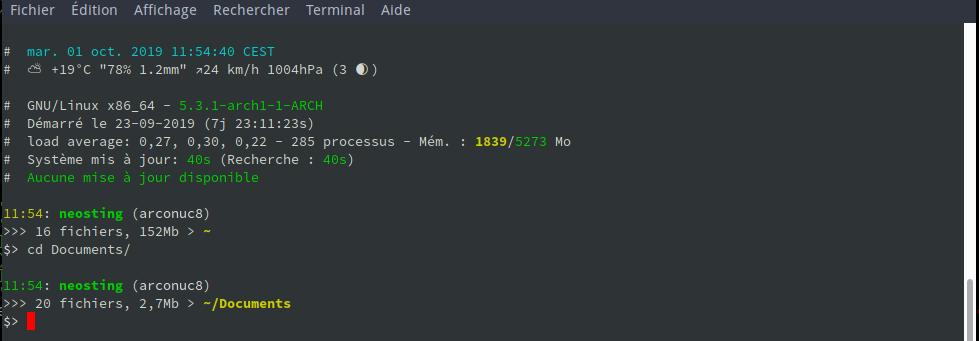 echolib terminal info script prompt folder