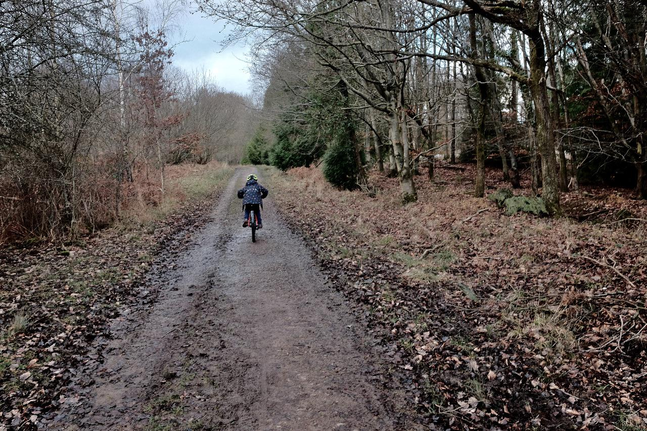 A child cycles away from the camera up a forest track