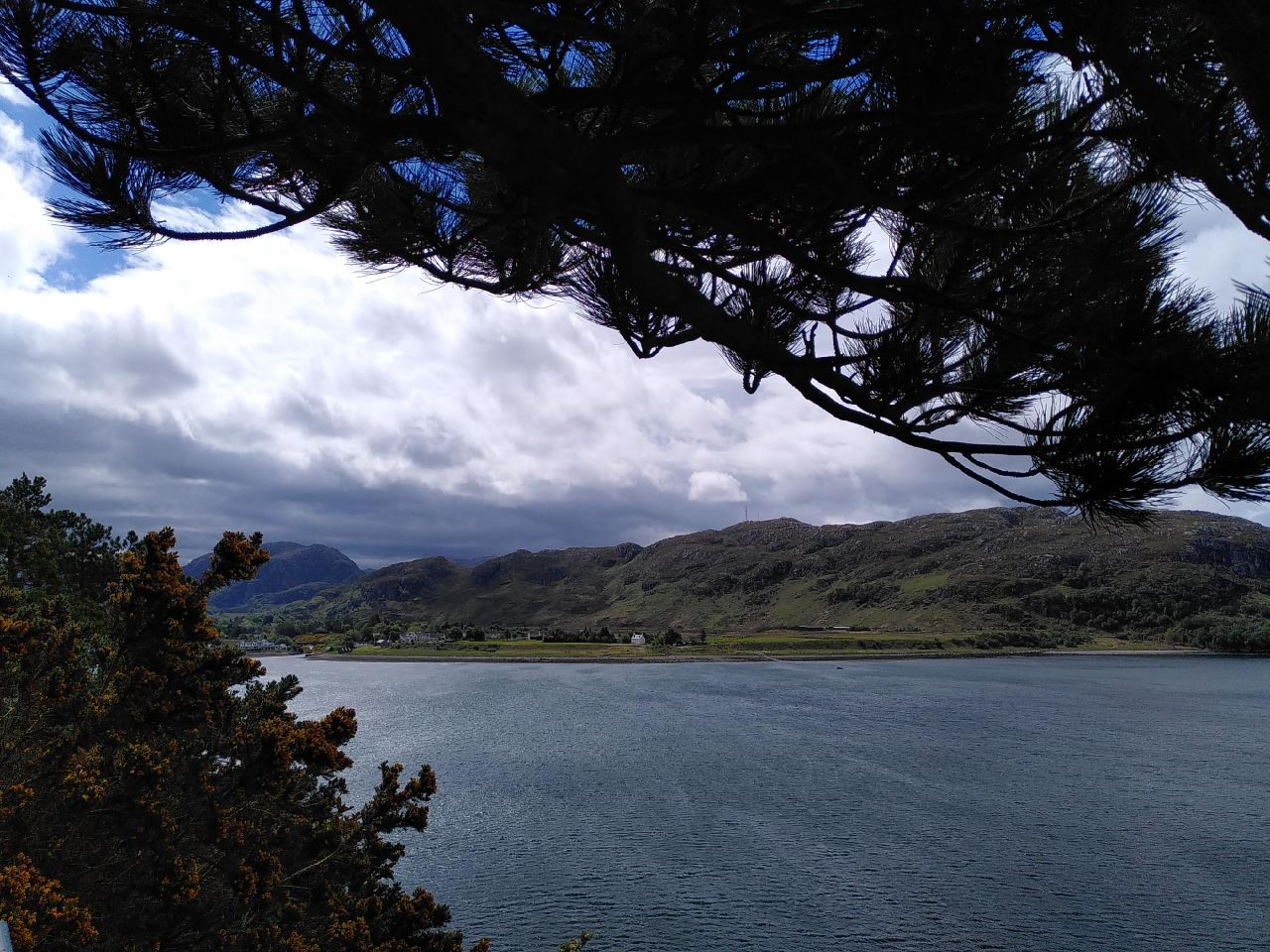 Pine branch thick with needles shades an image of a calm bay looking across to a heathered hill with the village drawing itself above the shore. Dark clouds overhead.