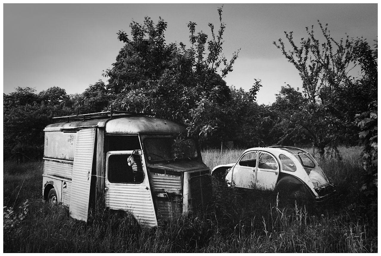 Monochrome of a Citroën H Van and Citroën 2CV abandoned in a field