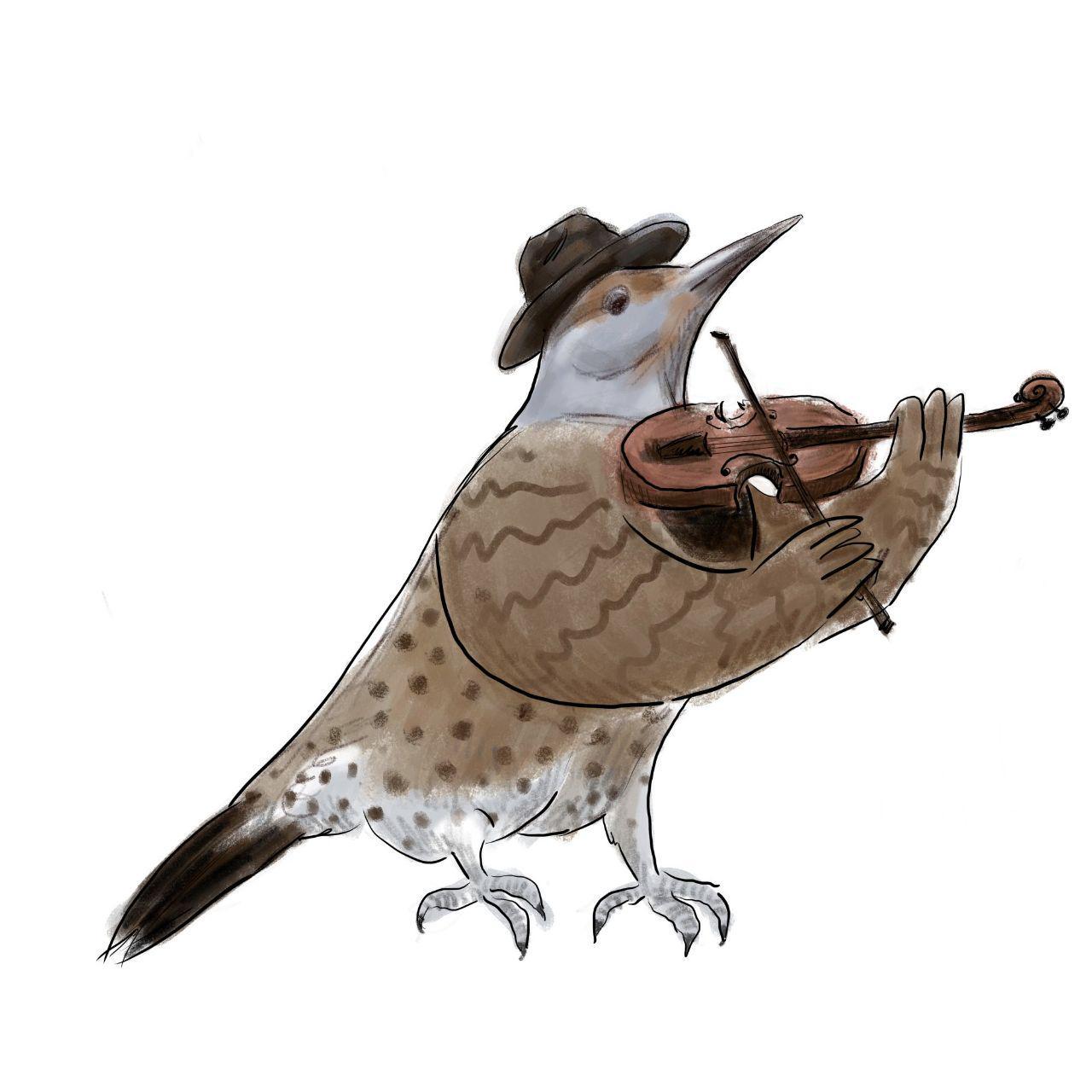 fiddler flicker