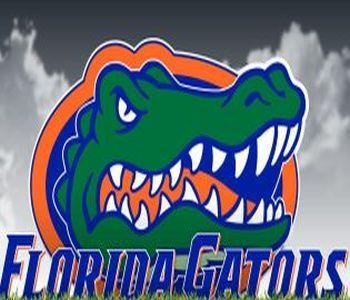 Softball Florida Logo