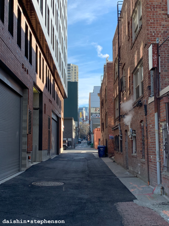 alley between high rises and brickers