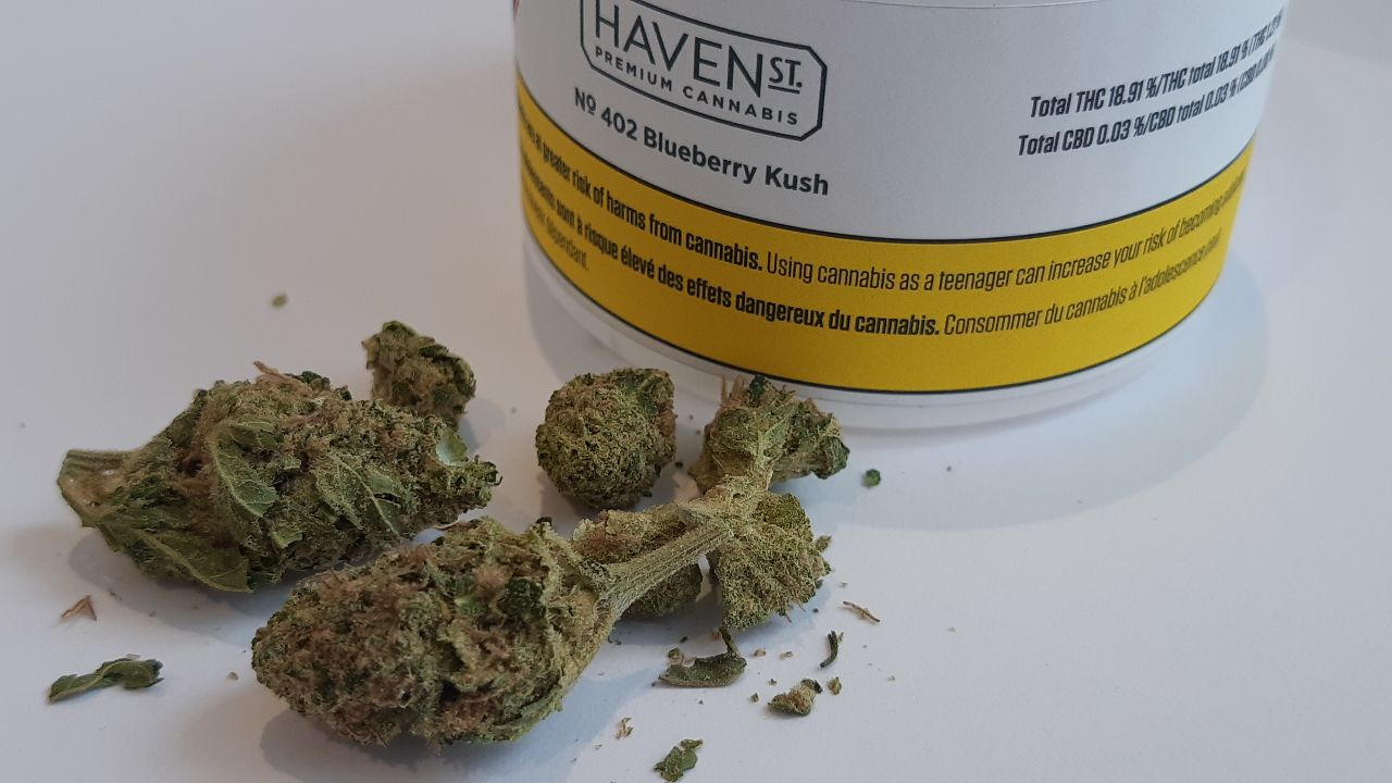 haventst-blueberrykush-7