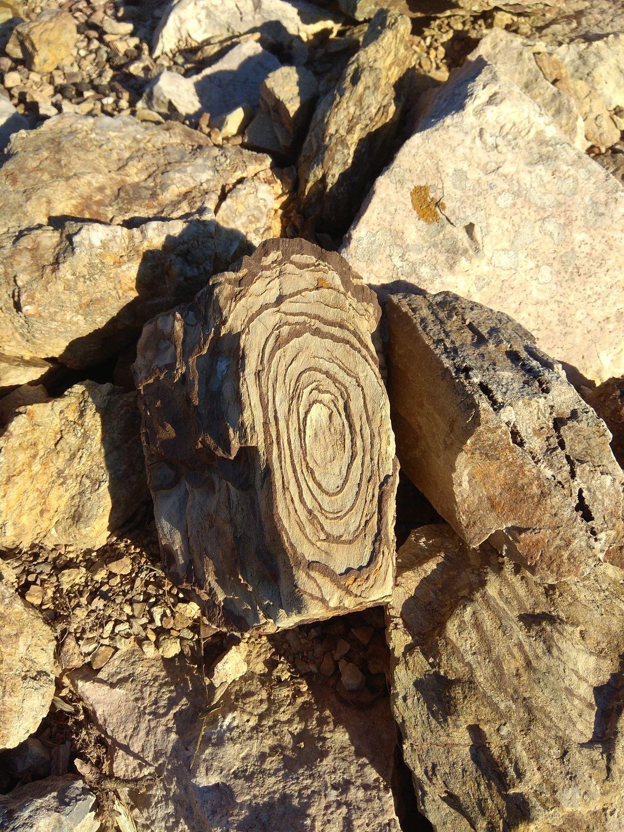Εντυπωσιακοί σχηματισμοί στα πετρώματα