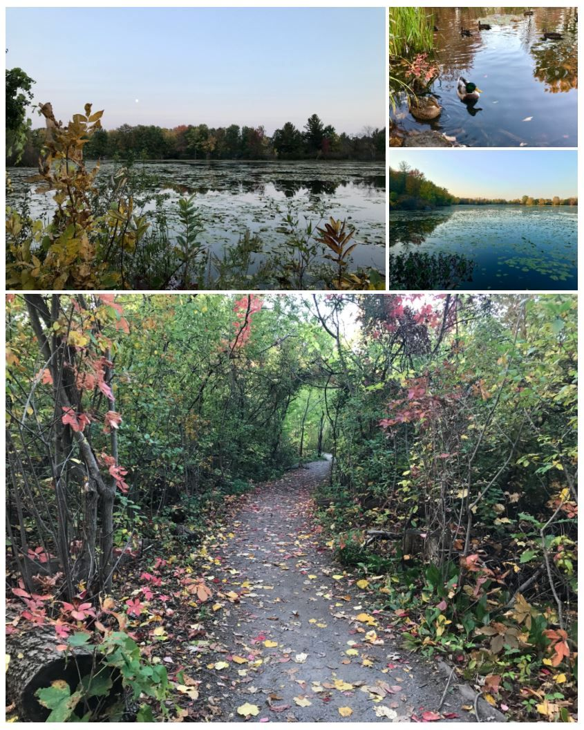 Mud Lake Trail - Ottawa, ON
