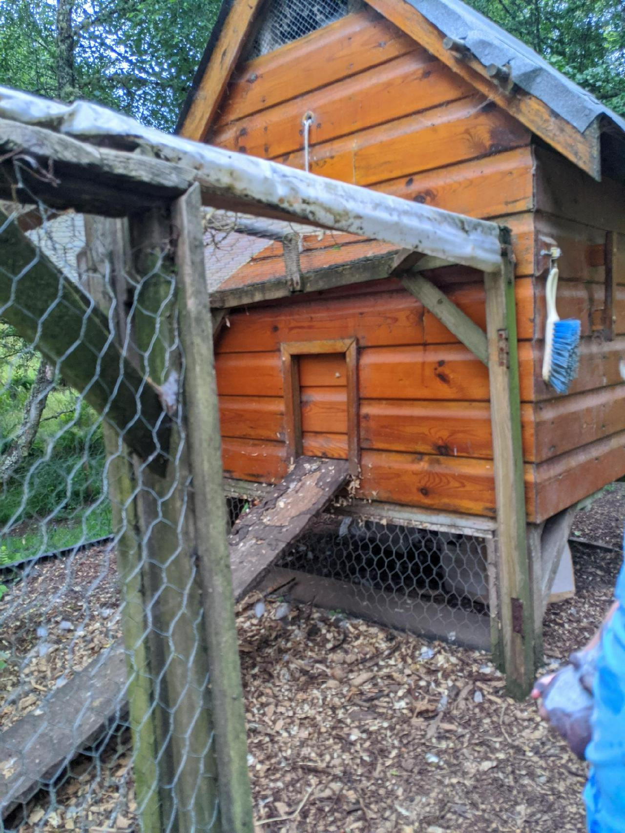 A wooden hen house with a closed door. A tiny person's hand is just visible on the edge of the photo. A chicken-wire run, with plastic roof, extends from the house.
