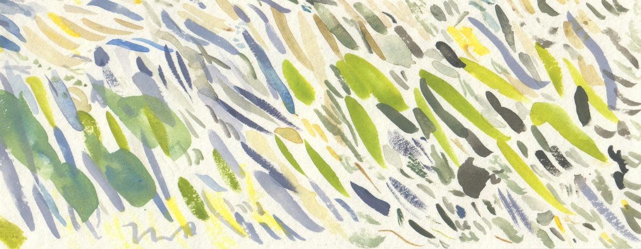Seán watercolour strip