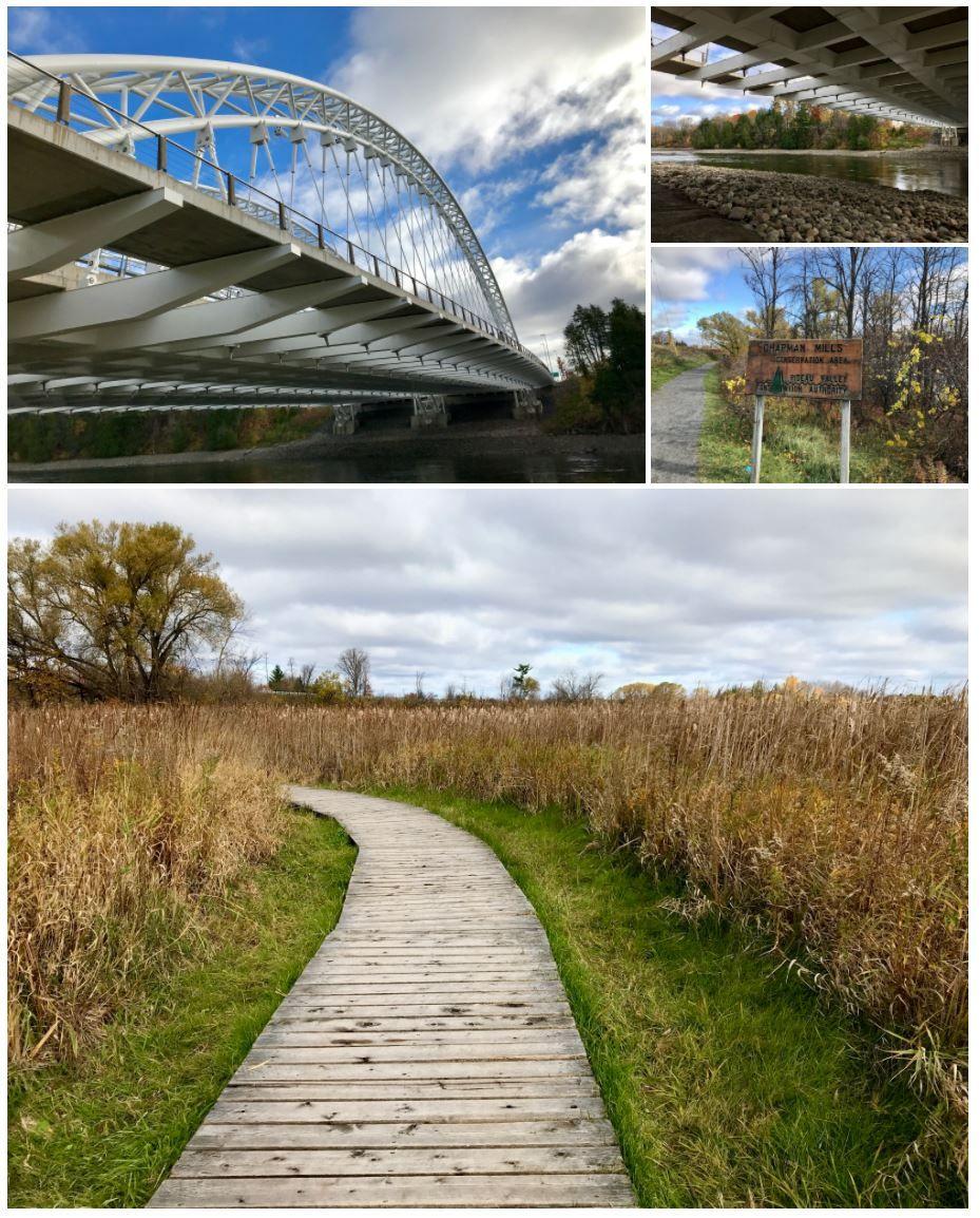 Chapman Mills Conservation Area - Ottawa, ON