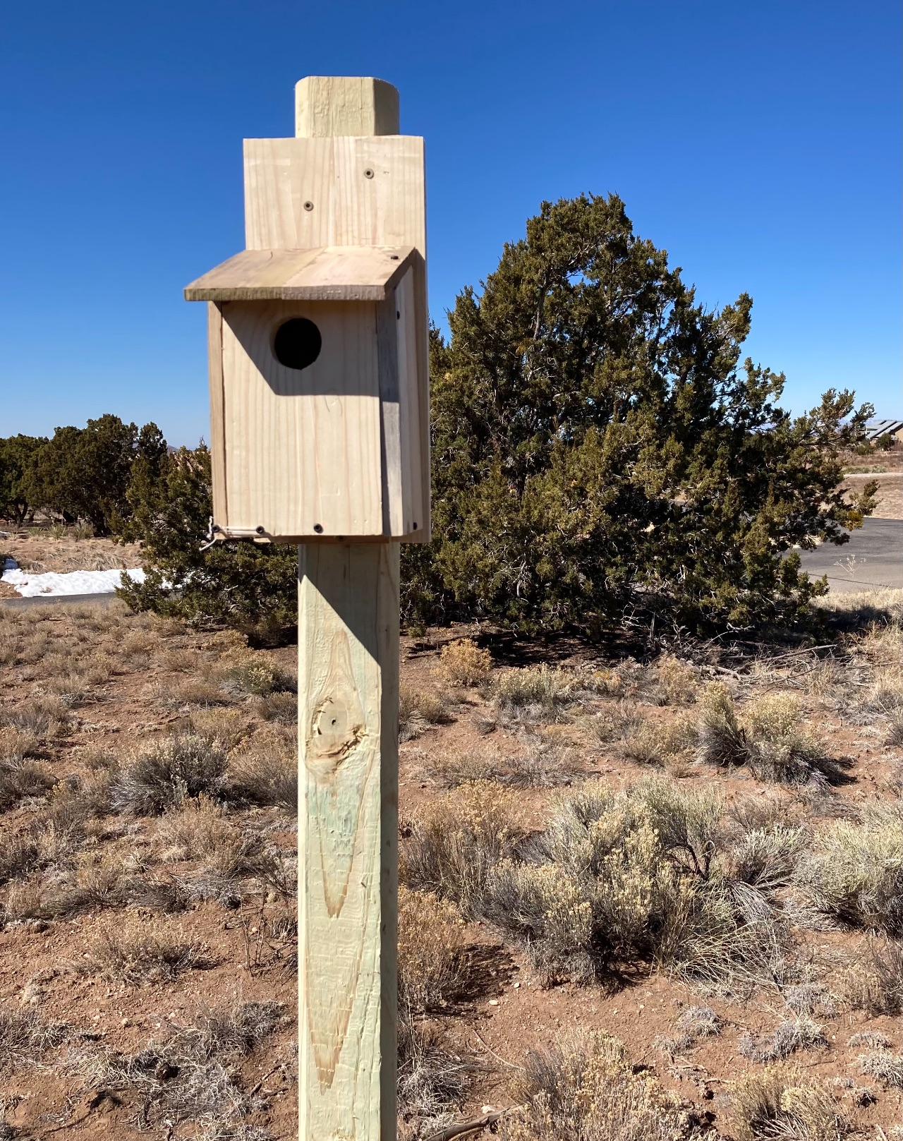 Birdhouse on post, front view