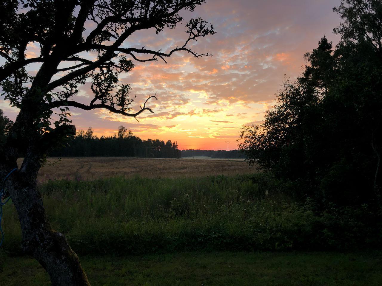 Solnedgång vid Laggartorp 16 juli 2020.