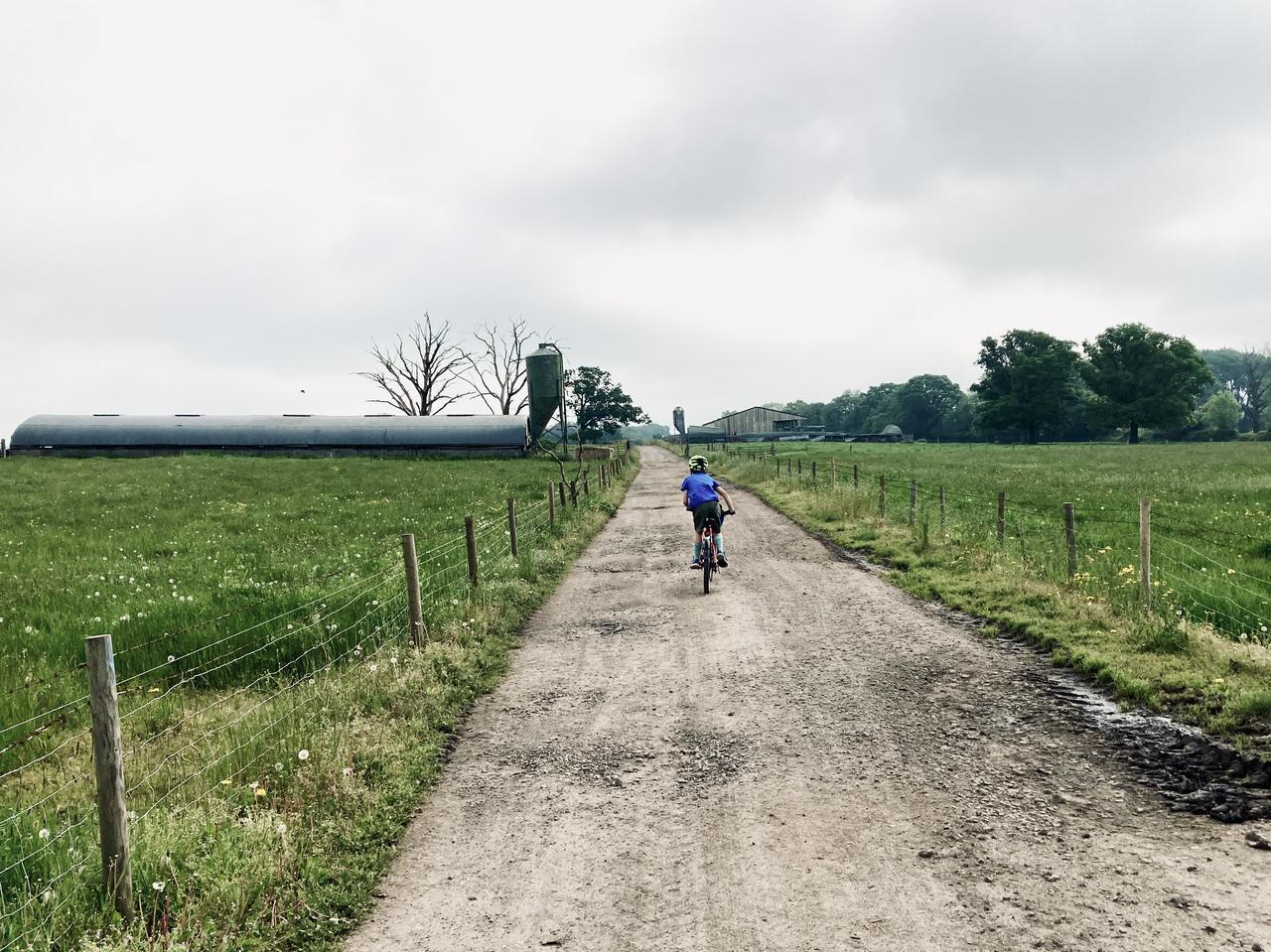 A child in a blue t-shirt rides a bike away down a farm track